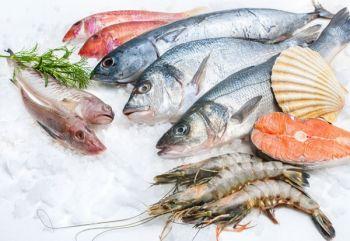 Emerald Bay Bar & Grill, Friday: Fresh Fish Specials